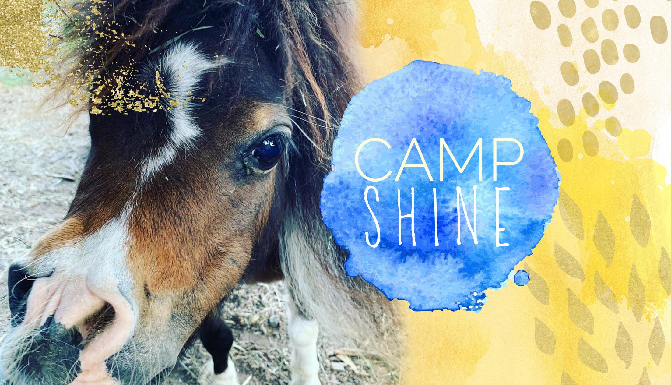 Camp SHINE 2021